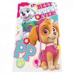 Fleece deka Paw Patrol Best...